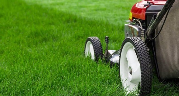How To Cut Grass With A Lawnmower