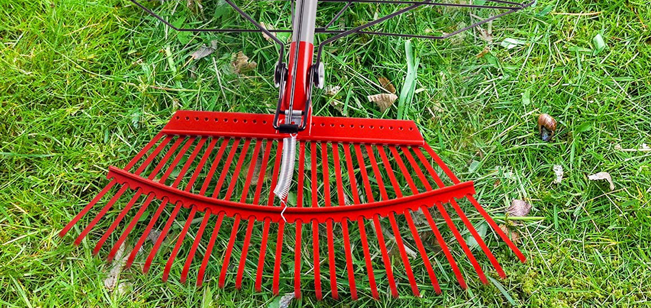 Best Rake for Dead Grass (Review) in 2021 – Top 5 Picks!