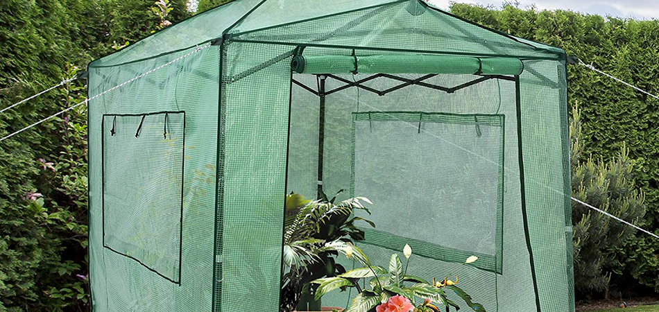 Best 6×8 Greenhouse Reviews- Best Choices of 2021