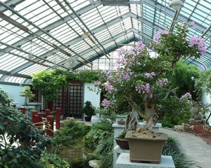 How to Cool a Greenhouse