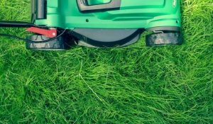 Bagless Process Of Mowing In Both Methods