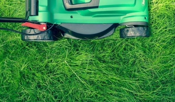 How To Use Lawn Mower Without Bag – Get All The Details
